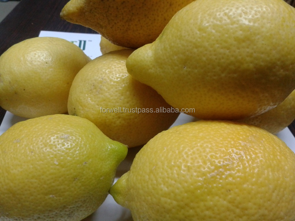 Quality Product: Lemons from Egypt