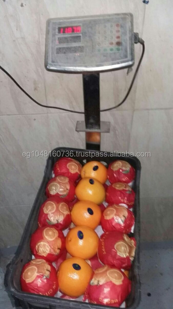 Fresh Orange Fruit VERY CHEAP PRICE