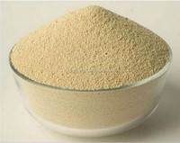 High Protein Soybean Meal