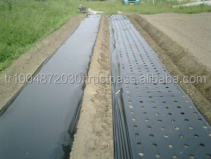 High Quality Plastic Mulch Film