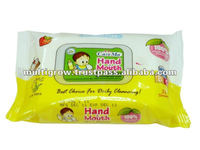 Hand & Mouth Wet Wipes
