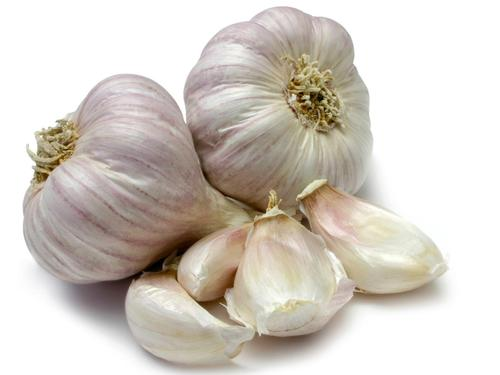 Garlic Natural