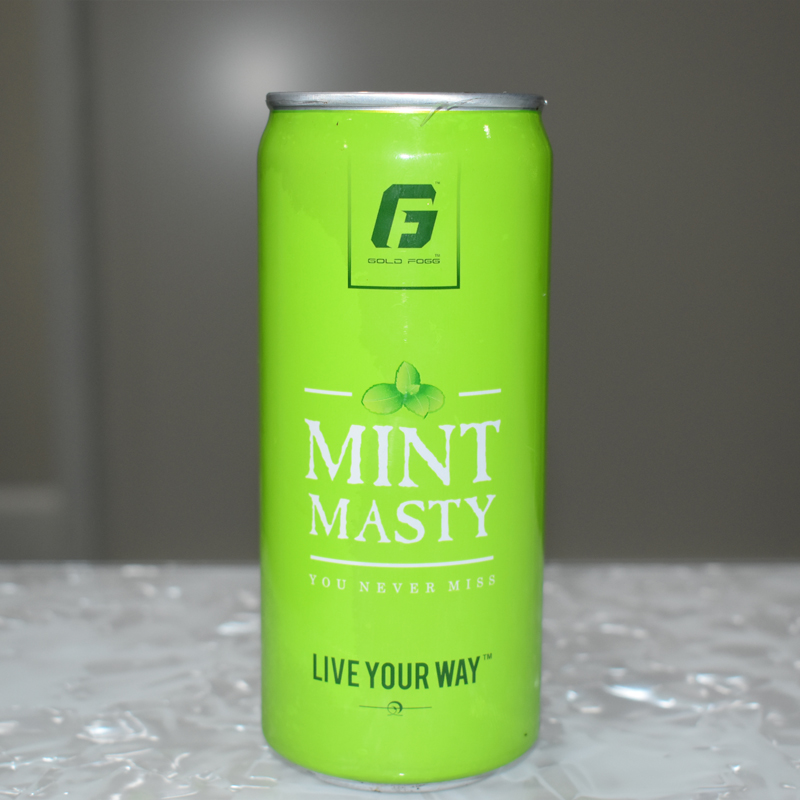 MInt Masty a refreshment drink to refresh your mood - 300ML