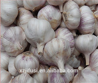 Purle White Fresh Natural Garlic