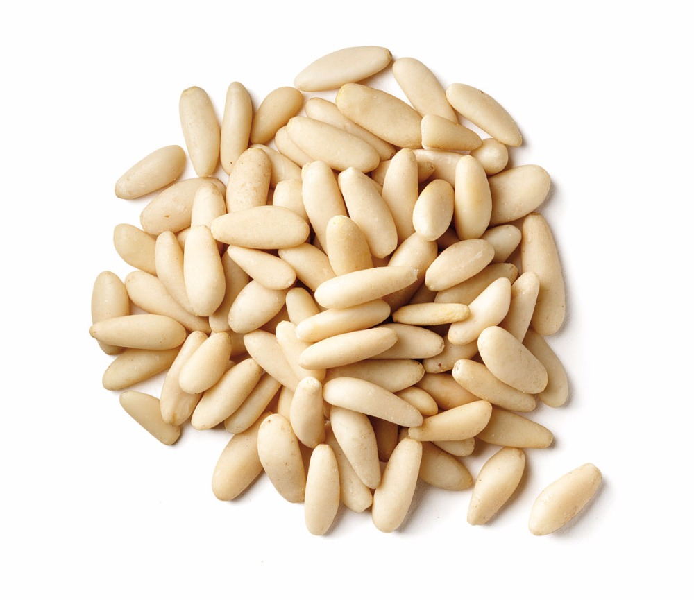 Raw processing type wholesale Pine nut kernels pakistan pine nuts