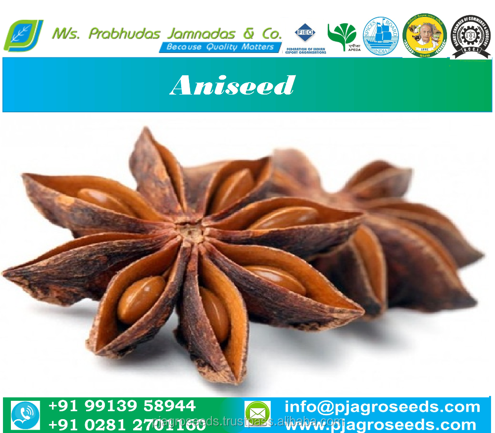 Indian Star Aniseed