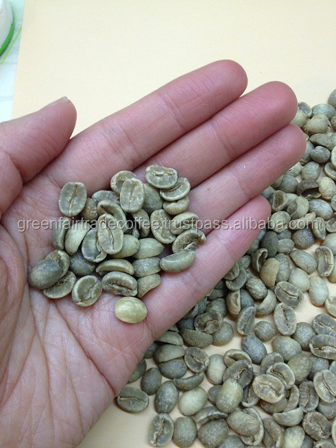 High quality and good price green arabica coffee beans