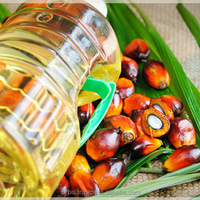 RBD CP8 And CP10 Palm Oil
