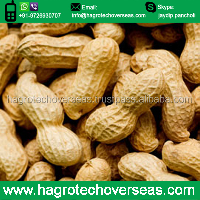 Best Price Peanut Certified Supplier from India