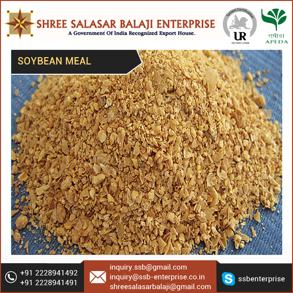 48% Protein Rich High Fibre Level Animal Feed Indian Soybean Meal