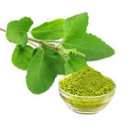 HERBAL TULSI POWDER