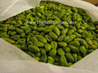 blanched peeled green pistachio kernel