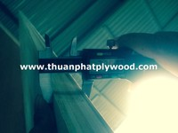 VIETNAM TRADING COMPANY FOR CONSTRUCTION PLYWOOD