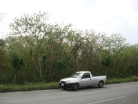 GREAT INVESTMENT BIG land in merida yucatan mexico great investment