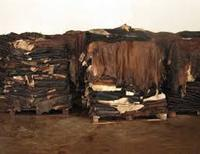 Wet Salted cow skin Leather for sale