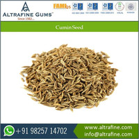 New And Fresh Quality Cumin Seed From Best Food Manufacturer Company