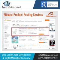Get Your Products Listed on Top Alibaba Pages with Our Alibaba Marketing Services