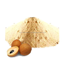 Spray Dried Chikoo Powder fruit powder
