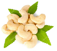 Cashew Nuts, Whole Cashew Nuts, W-320, Peeled Cashew Nuts