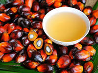 RBD Palm Olein(Vegetable Cooking Oi)l, RBD Palm Oil