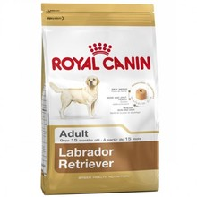 Royal Canin Labrador Retriever Dog Food special for Labrador Retrievers