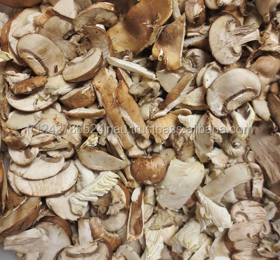Oyster Mushroom for sale at a reduce rate