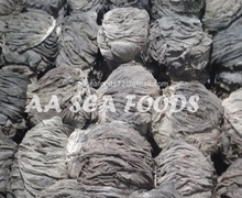 Leading Exporter of Frozen Dry Beef Buffalo Omasum Salted Processed