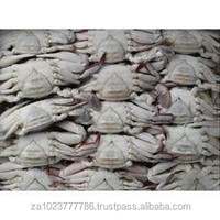 Frozen Crab GRADE A FOR SALE HOT SALES