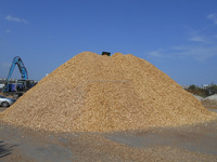 WOOD CHIPS MIXED EUROPEAN