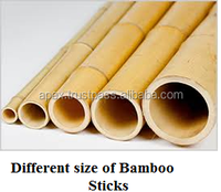 Bamboos for sale Stick/Canes/Poles Dry-Best Poles ion quality