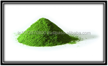moringa leaves powder for USA Market