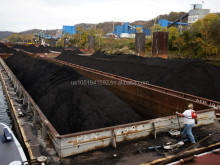 Steam Coal Origin:West Virginia, USA