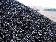 high quality Indonesian Steam Coal