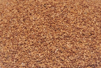 Organic Brown Sesame Seeds