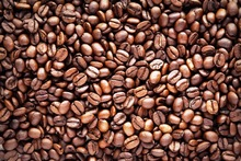 Organic Robusta and Arabic Coffee Beans or robusta coffee beans 60kg