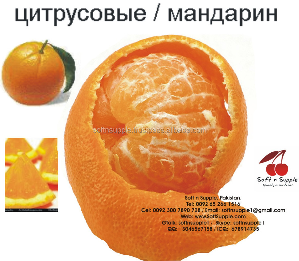 Fresh Kinnow | Kinno | Mandarin | Citrus Fruit (Free from Virus)