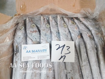 Customer's/requirement A grade frozen ribbon fish/whole round