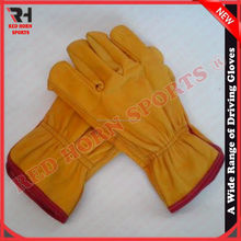Lamb Skin Driving Gloves, European Standard, Best Winter Gloves