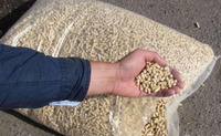 Beech Wood Pellets for Power Plant & Boiler industrial