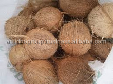 FRESH COCONUT FOR SALES