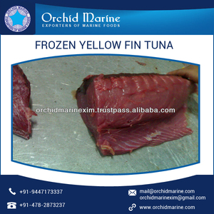 Cleaned Delicious Yellow Fin Tuna Fish with Skin for Sale