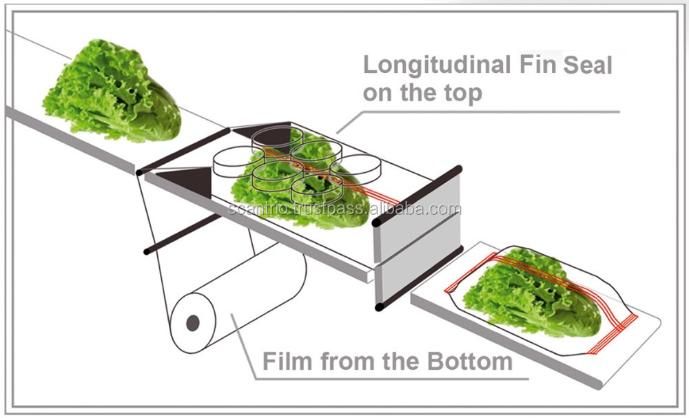 full automatic Broccoli vegetable wrapping machine