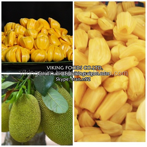 High quality IQF FROZEN/DRIED/FRESH JACKFRUIT seedless from VIETNAM