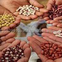 Seed Coating Polymer For Agriculture