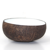 Coconut Bowl White Lacquer FDA Approved