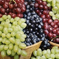 Fresh Grapes (Superior_ Fame_ Crimson_ Thompson_ Red Glope), (Seedless,_ Seeded)