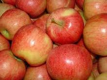 FRESH RED ,FUJI APPLE