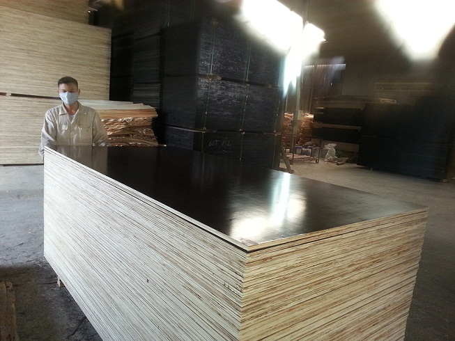 Good Sale Viet Nam high quality film faced plywood for construction/furniture/other purposes