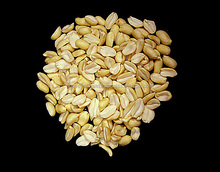 INDIAN NEW CROP SPLIT BLANCHED GROUNDNUT KERNEL