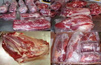 HALAL FROZEN BONELESS BEEF/BUFFALO MEAT AND PARTS AVAILABLE